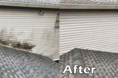 Exterior Side Panel Pressure Wash